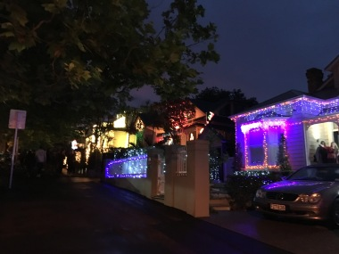 Franklin Street houses decked out in lights